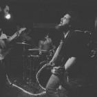 VIVA BELGRADO live