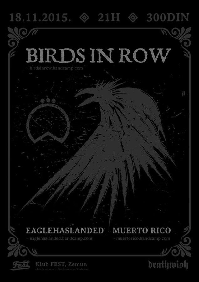 BIRDS IN ROW