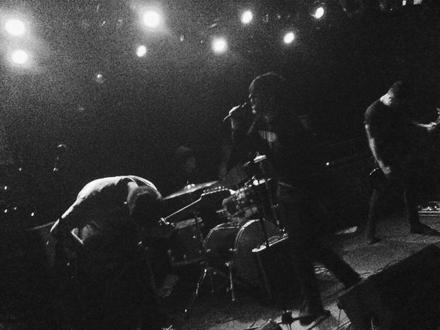 CAVALCADES live by Johan Van Hattum
